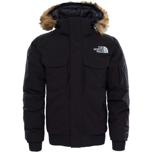 The North Face Men's Gotham GTX Parka
