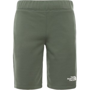 The North Face Boy's Surgent Shorts